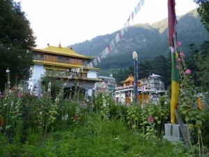 38-Temple Budista Nyinmapa