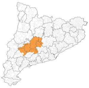 Gran_Segarra